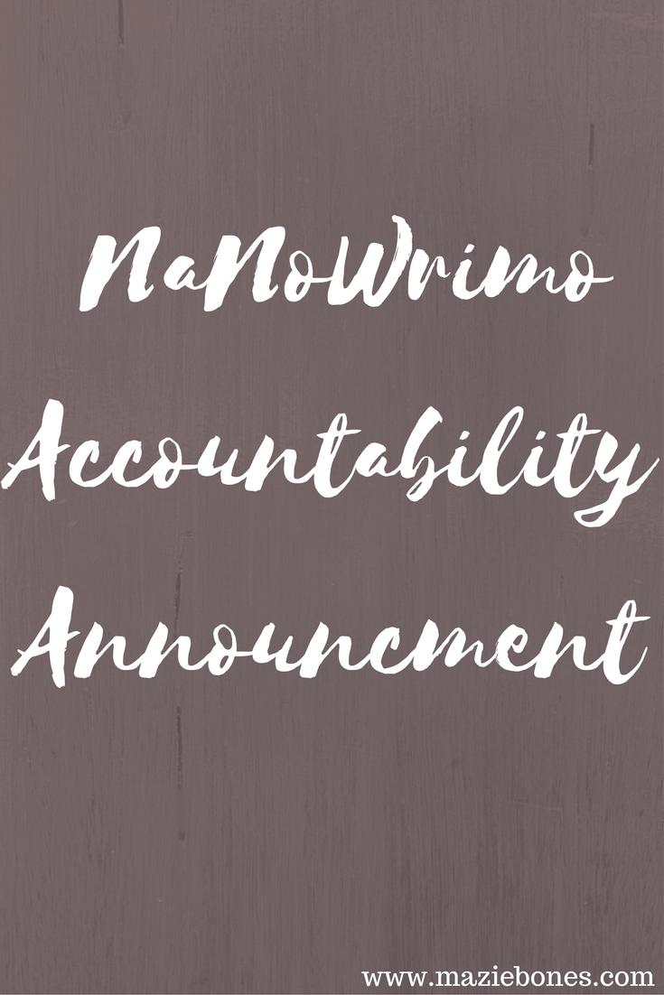 nanoaccountability (1)